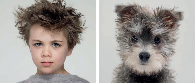 Веселая серия фотографий показывает, насколько собаки могут быть похожи на своих владельцев