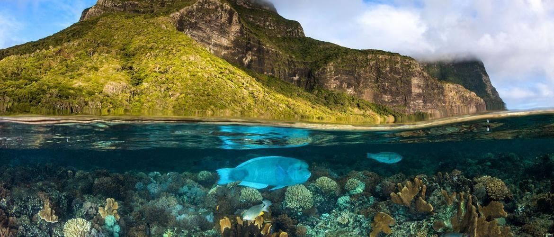 Обережно! Ці фото від National Geographic викликають гостре відчуття подорожувати
