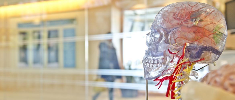 Роботы, которые играют умерших людей, и другие шокирующие изобретения человечества