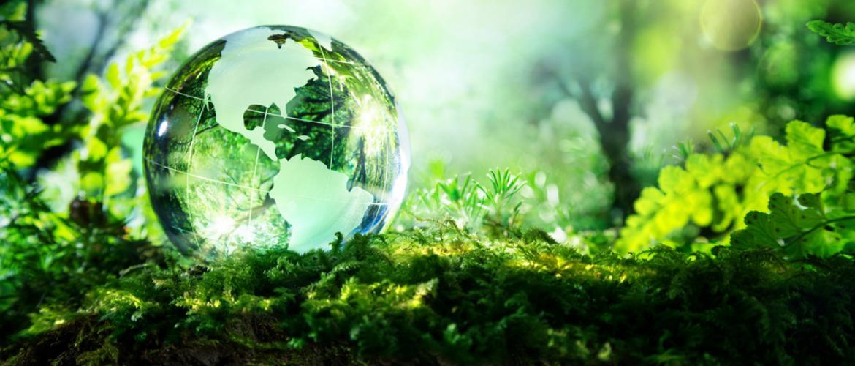 Екологічні ноу-хау, які врятують нашу планету