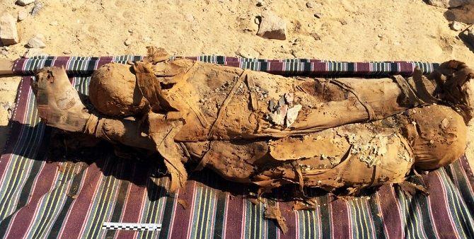 египет гробница мумии