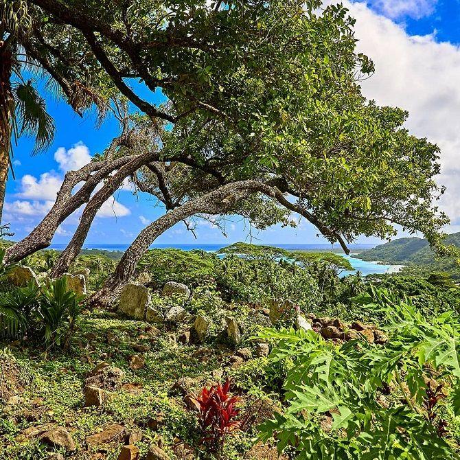 Бора-Бора (Таити)