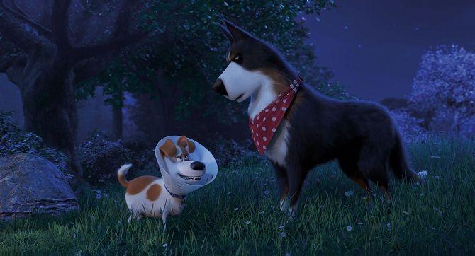 Секрети домашніх тварин 2