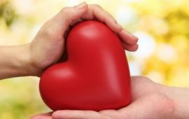 «Живой» пластырь восстановит сердце после приступа