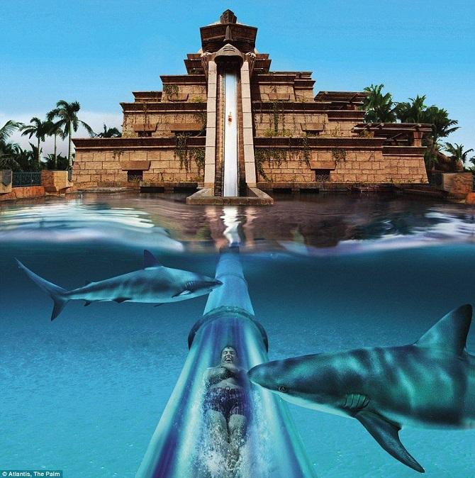 аквапарк Atlantis Paradise Island