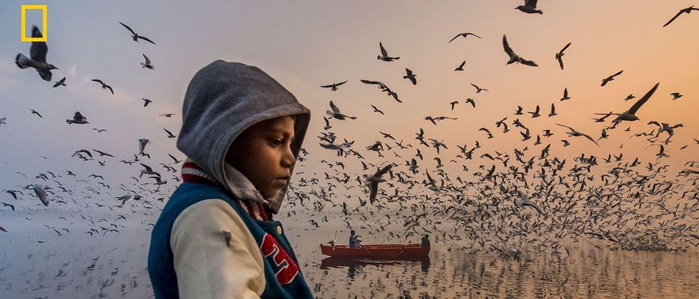 Переможці конкурсу National Geographic Travel Photo Contest 2019: 26 кращих фото