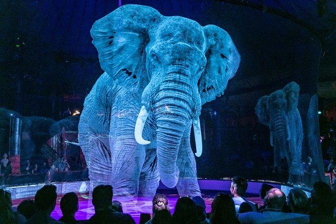 голограмма слона