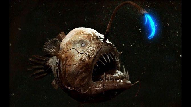 Морський диявол