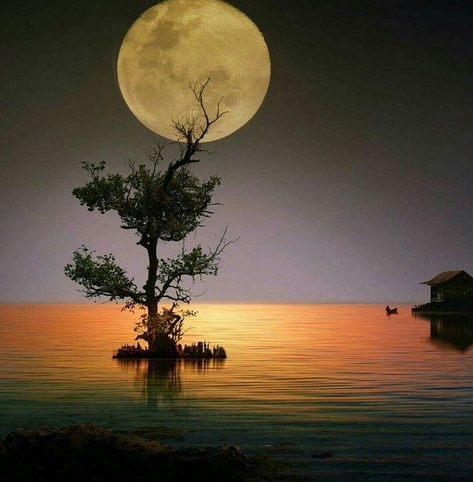 Повний Місяць у серпні 2019 року: чому ми залежимо від Місяця? 1