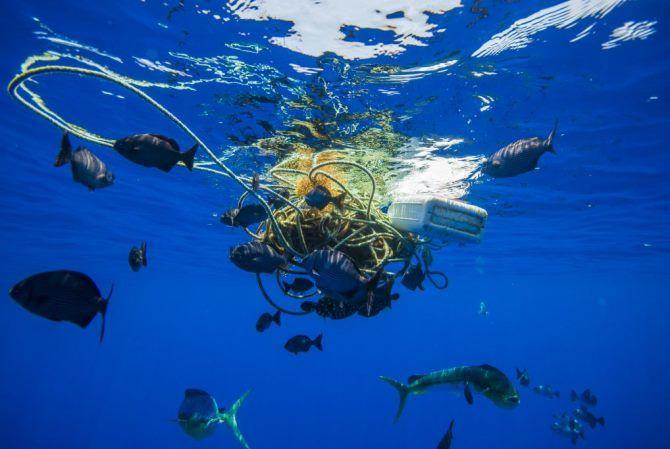Велика Тихоокеанська сміттєва пляма