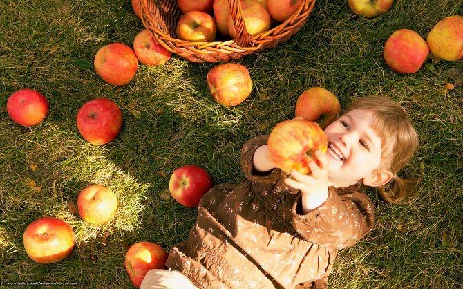 Яблучний спас 2020: традиції, прикмети, коли святкувати? 6