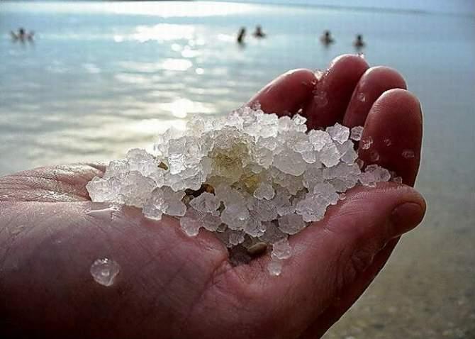 моря і океани солоні