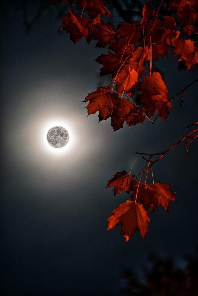 Повний Місяць у листопаді 2019 року