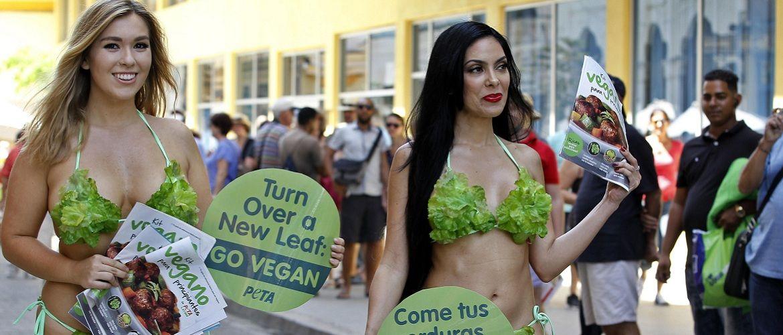 Міжнародний день вегана  2019: 5 фактів про «прісне життя»