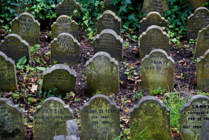 кладовищ домашніх тварин  Гайд-Парк, Лондон