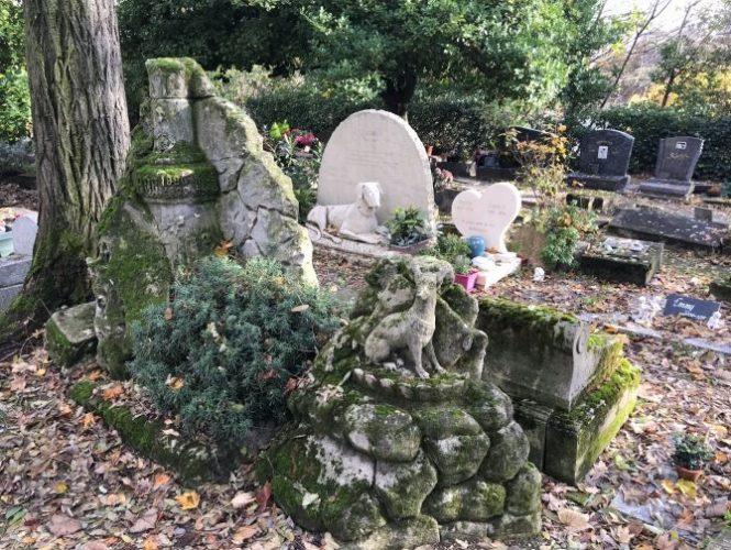кладовище домашніх тварин Шьен в местечке Аньер-сюр-Сене, Париж