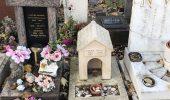 кладбища домашних животных