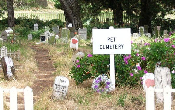 кладовище домашніх тваринв Президио, Сан-Франциско