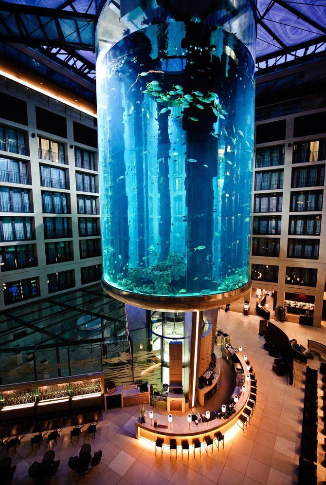 Лифт в аквариуме