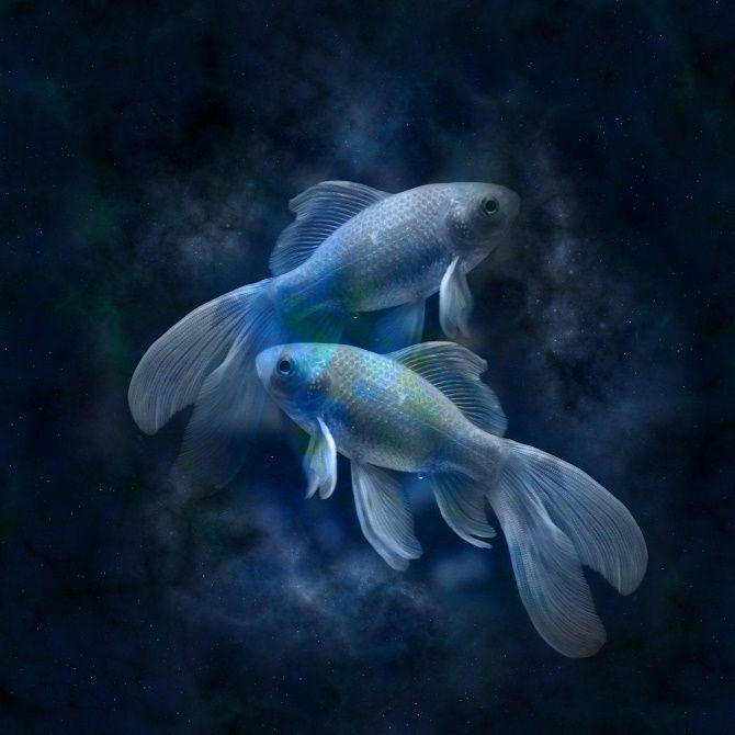 финансовый гороскоп рыбы