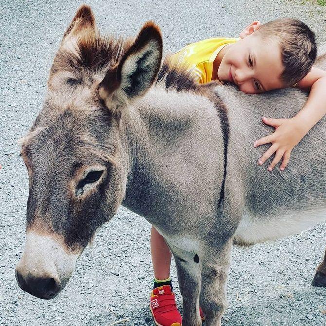 хлопчик з поні