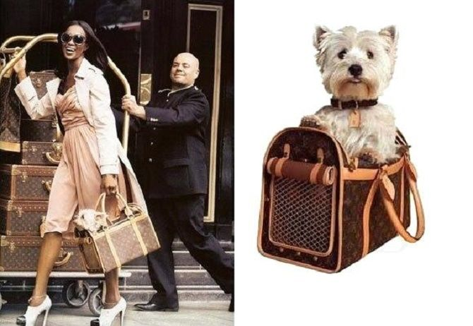 чемодан для собак