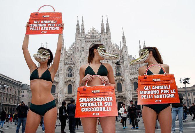 історія голих протестів