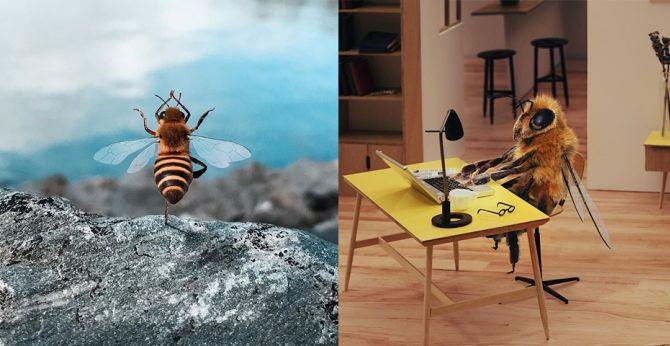 инста пчелка Би
