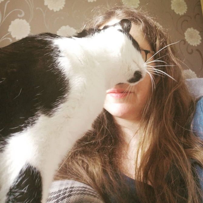 photo with the cat