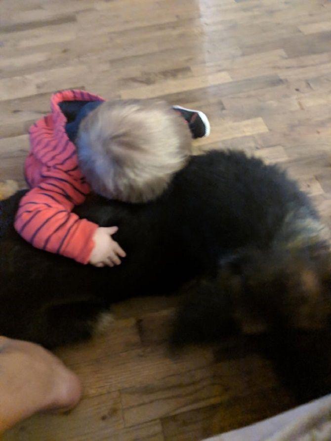 обійми тварин та дітей