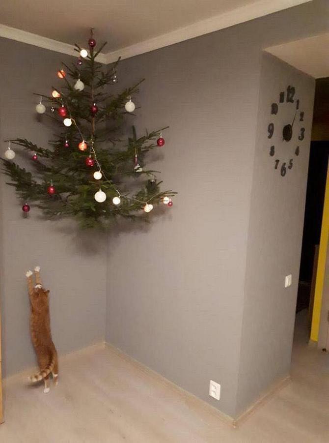 кот тянется к елке