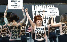 голые протесты