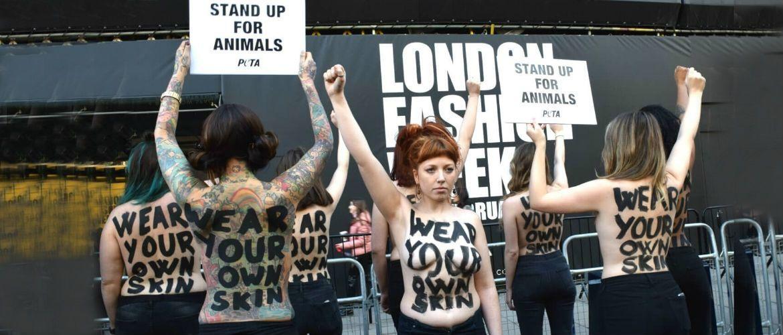 Провокація і епатаж: голі протести набирають популярність