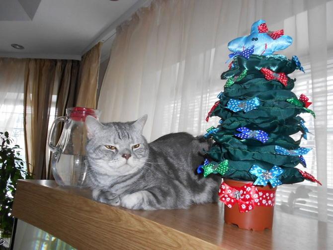 серый кот и новогодняя елка
