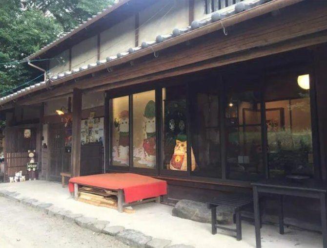 Nyan Nyan Ji храм киото