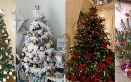 Найкрасивіші новорічні ялинки від читачів Joy-pup