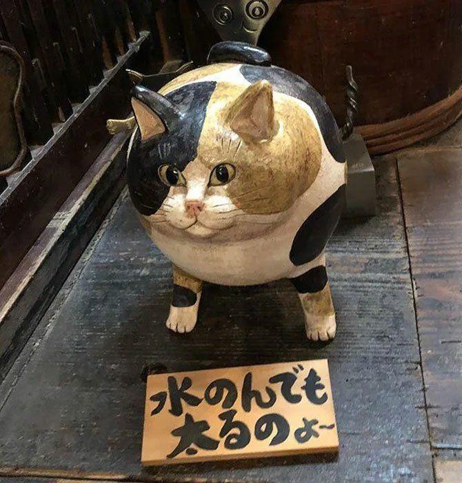 кот храм в киото япония