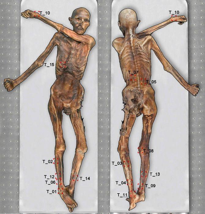 останки мумии Этци