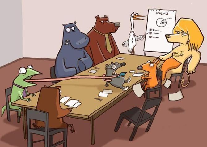 звери в офисе