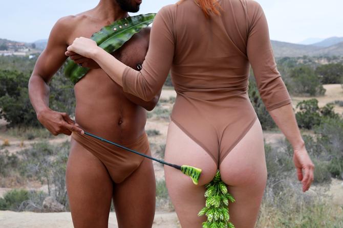 экосексуалы