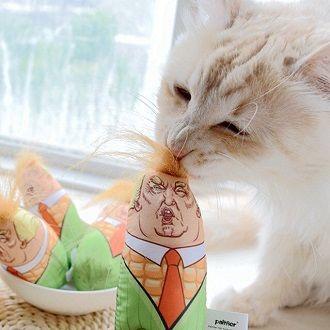 Наймиліші кішки, які дуже прив'язані до своїх іграшок 8
