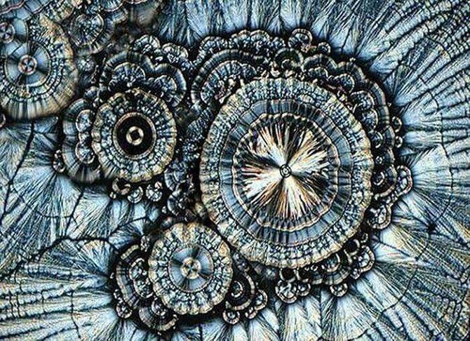 Вітамін С під мікроскопом
