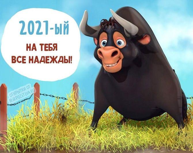 Смешные поздравления на Новый год 2021 в картинках 7