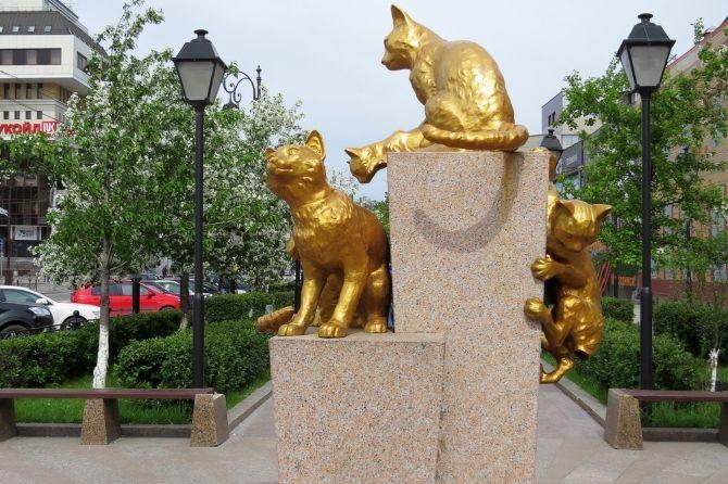 Сквер сибірських кішок
