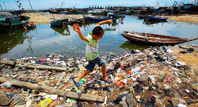 екологічна катастрофа