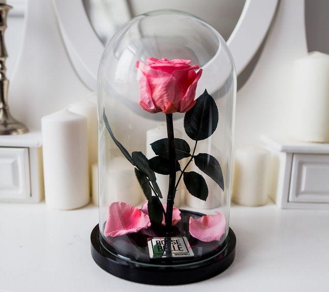 «Вечная» роза