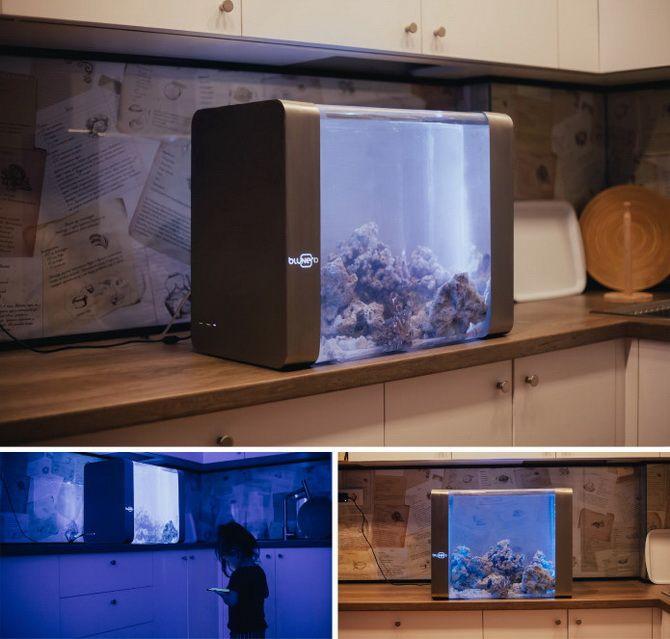 умный аквариум