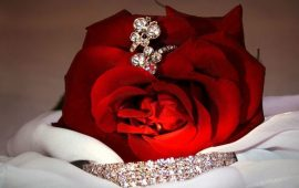 украшение и роза