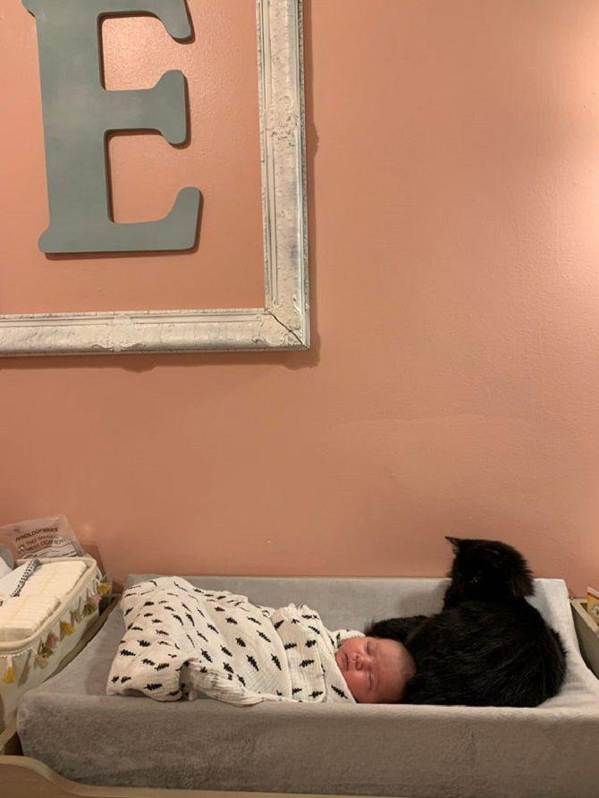 кішка та немовля