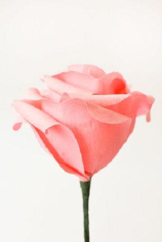 Мистецтво DIY: покрокова схема, як легко і просто зробити квіти з паперу своїми руками 13